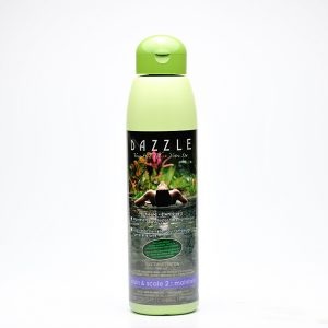 Stain & Scale 2: Maintain | Dazzle Water Care
